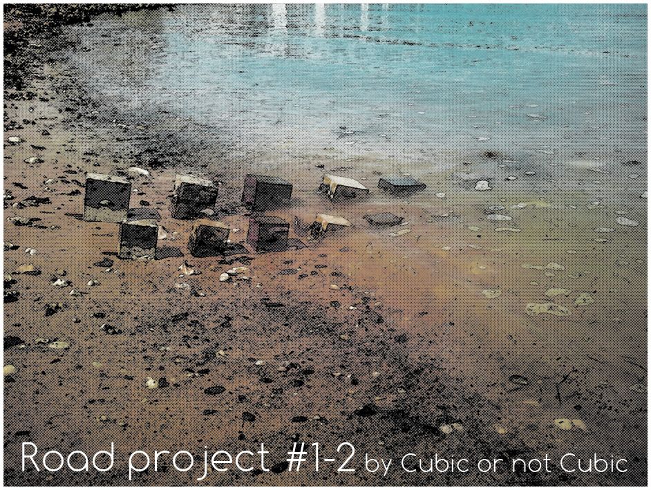 Road project 1-2 - Cubic or not Cubic